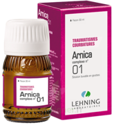 Lehning Arnica Complexe N° 1 Solution Buvable En Gouttes Fl/30ml à Genas