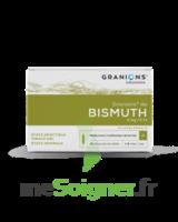 Granions De Bismuth 2 Mg/2 Ml S Buv 10amp/2ml à Genas