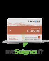 Granions De Cuivre 0,3 Mg/2 Ml S Buv 30amp/2ml à Genas