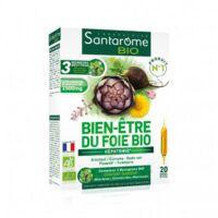 Santarome Bio Bien-être Du Foie Solution Buvable 20 Ampoules/10ml à Genas