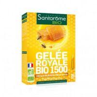 Santarome Bio Gelée royale 1500 Solution buvable 20 Ampoules/10ml à Genas