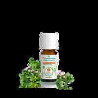 Puressentiel Huiles Essentielles - Hebbd Thym à Thujanol Bio* - 5ml à Genas
