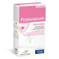 Pileje Feminabiane Périnatal 28 Gélules Blanches Et 28 Gélules Jaunes à Genas
