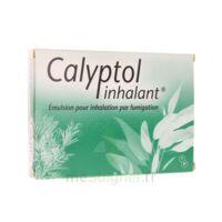 Calyptol Inhalant, émulsion Pour Inhalation Par Fumigation à Genas
