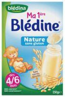 Blédine Ma 1ère blédine nature 250g à Genas