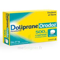 Dolipraneorodoz 500 Mg, Comprimé Orodispersible à Genas