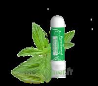 Puressentiel Respiratoire Inhaleur Respiratoire Aux 19 Huiles Essentielles - 1 Ml à Genas