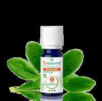 Puressentiel Huiles essentielles - HEBBD Ravintsara BIO* - 5 ml à Genas