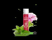 Puressentiel Anti-pique Roller Apaisant Anti-Pique - 5 ml à Genas
