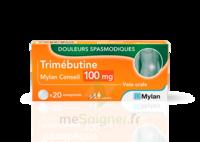 Trimebutine Mylan Conseil 100 Mg, Comprimé à Genas