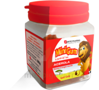 Minigum Acérola Gomme Cerise Pot/50 à Genas