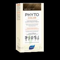Phytocolor Kit coloration permanente 6.3 Blond foncé doré à Genas