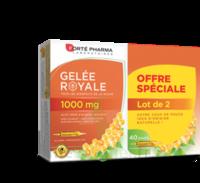 Forte Pharma Gelée Royale 1000 Mg Solution Buvable 2*b/20 Ampoules/10ml à Genas
