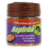 Aspiréa Grain Pour Aspirateur Cannelle Orange Huile Essentielle Bio 60g à Genas