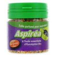 Aspiréa Grain pour aspirateur Eucalyptus Huile essentielle Bio 60g à Genas