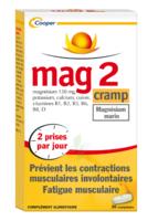 Mag 2 Cramp Comprimés B/30 à Genas
