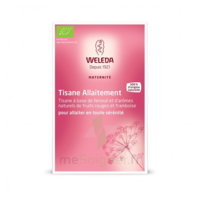 "Weleda Tisane Allaitement ""Fruits rouges"" 2x20g à Genas"