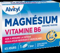 Govital Magnésium Vitamine B6 Comprimés B/45 à Genas