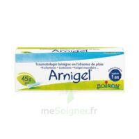 Boiron Arnigel Gel T(alumino-plastique)/45g à Genas